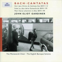 TRINITY CANTATAS II MAGDALENA KOZENA/MONTEVERDI CHOIR/J.E. GARDINER/ENGLISH Audio CD, J.S. BACH, CD