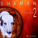 SHAMAN 2 - HEALING DRUM