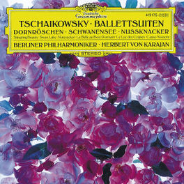 SWANLAKE/SLEEPING BEAUTY/ BP/KARAJAN Audio CD, P.I. TCHAIKOVSKY, CD
