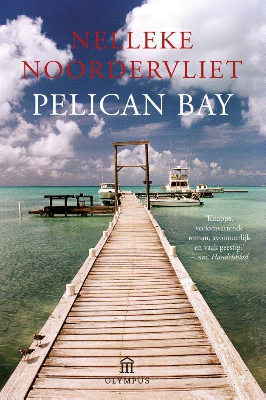 Pelican Bay roman, Nelleke Noordervliet, Paperback