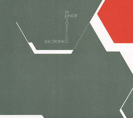 MUSOSTICS SOLO WORK OF MUSICIAN AND SOUND ENGINEER JOE WATSON JUNIOR ELECTRONICS, CD