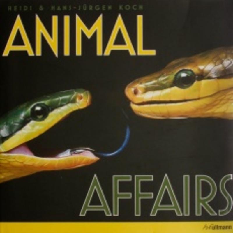 Animal Affairs, Hardcover JURGEN -KOCH, Hardcover