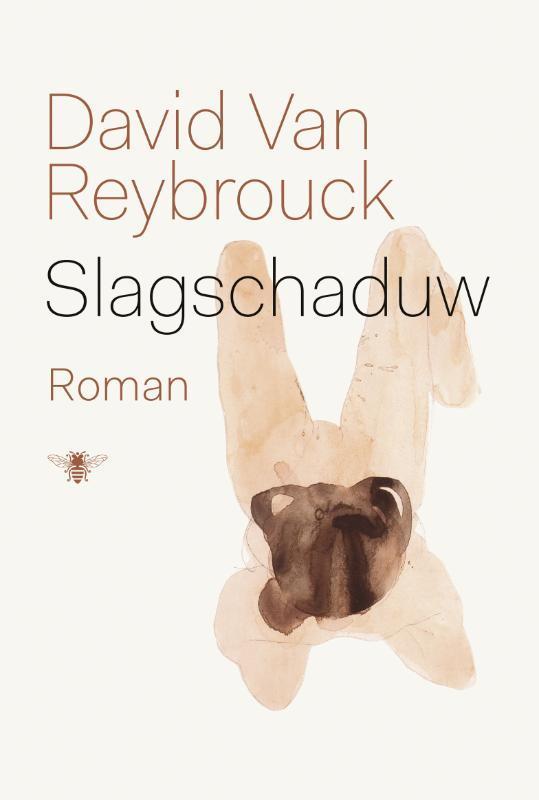 Slagschaduw roman, Van Reybrouck, David, Paperback