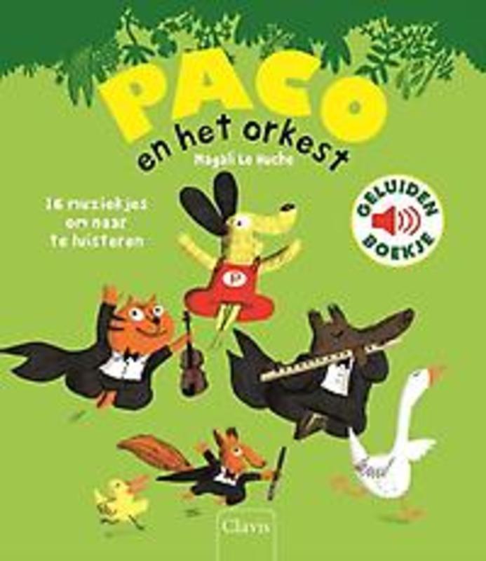 Paco en het orkest 16 muziekjes om naar te luisteren, Magali Le Huche, Hardcover