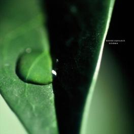 GOIANIA DAVIDE SQUILLACE, 12' Vinyl