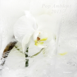POP AMBIENT 2015 180G LP + BONUS CD V/A, LP