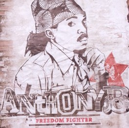 FREEDOM FIGHTER ANTHONY B., CD