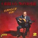 FLAMENCO FURY 2CD, 38 TKS,