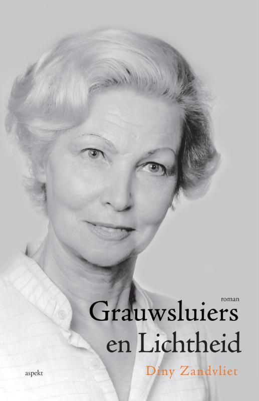 Grauwsluiers en lichtheid roman, Zandvliet, Diny, Paperback