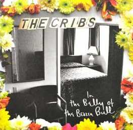 IN THE BELLY OF THE.. .. BRAZEN BULL CRIBS, CD