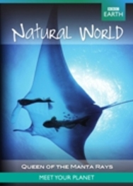 BBC earth Natural world natural world collection queen of the manta ray