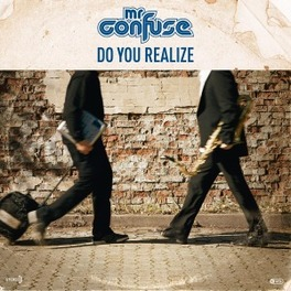 DO YOU REALIZE MR. CONFUSE, Vinyl LP