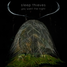 YOU WANT THE NIGHT SLEEP THIEVES, LP