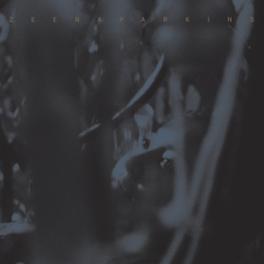DOUBLE DUPE DOWN KEYBOARDIST/HARPIST/COMPOSER ZEENA PARKINS, CD