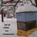 HEWN FROM WILDERNESS