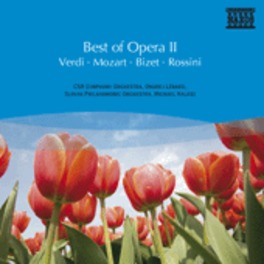 BEST OF OPERA II VERDI/MOZART/BIZET/ROSSINI V/A, CD