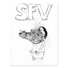 NO.2 -MCD- SFV ACID, CD