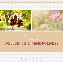 MUSIC FOR WELLBEING &.. .. MINDFULNESS // FRANTZ AMATHY V/A, CD