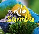 RIO - SAMBA