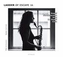 LADDER OF ESCAPE NO.11 .. NO.11